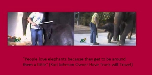 On the right Elephant Trainer and owner of Have Trunk will Travel Kari Johnson